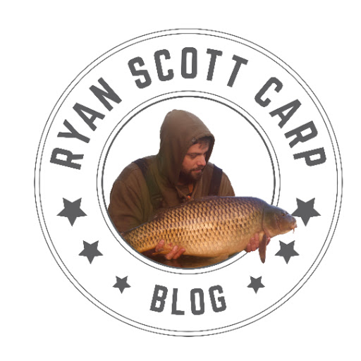 Ryan Scott Carp-Blog kimdir?